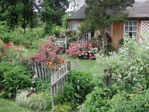 garden-for-dacha.jpg