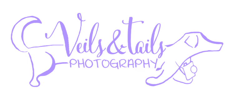 Veils & Tails Photography