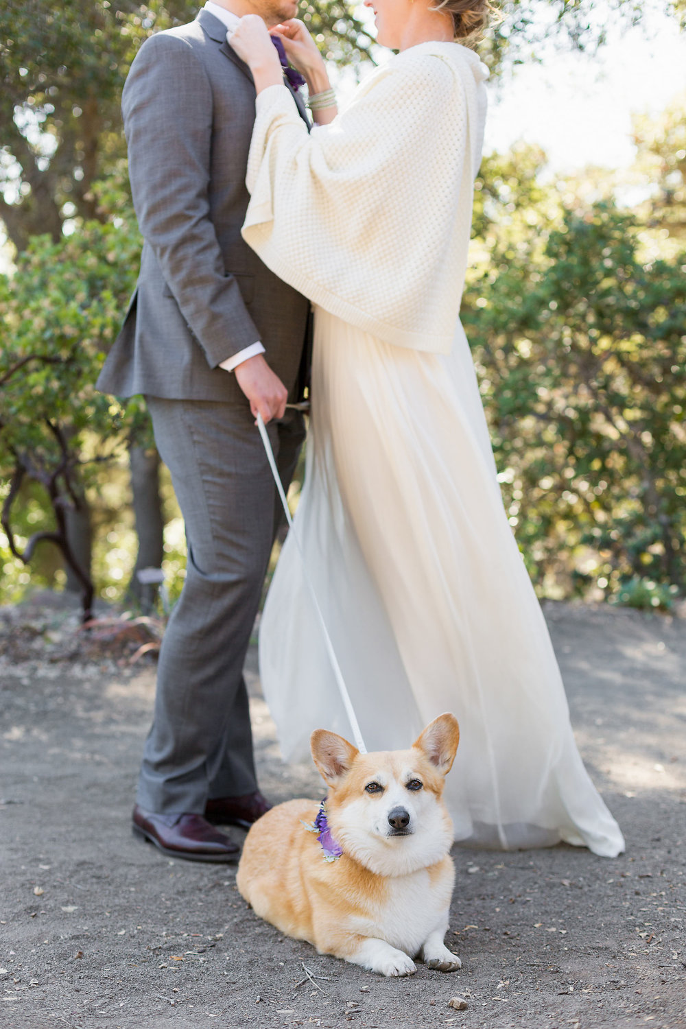 Absolutely exceptional. Kristen has been professional, approachable, and produced the best photos I've ever seen of me and my dog. We've done two sessions now - engagement shoot and Veils and Tails (bride and dog) shoot - and I cannot wait for her to photograph my wedding day. I wouldn't trust anyone else to document the occasion. Looking for a photographer for anything? Look no further. - ~ Kate D.