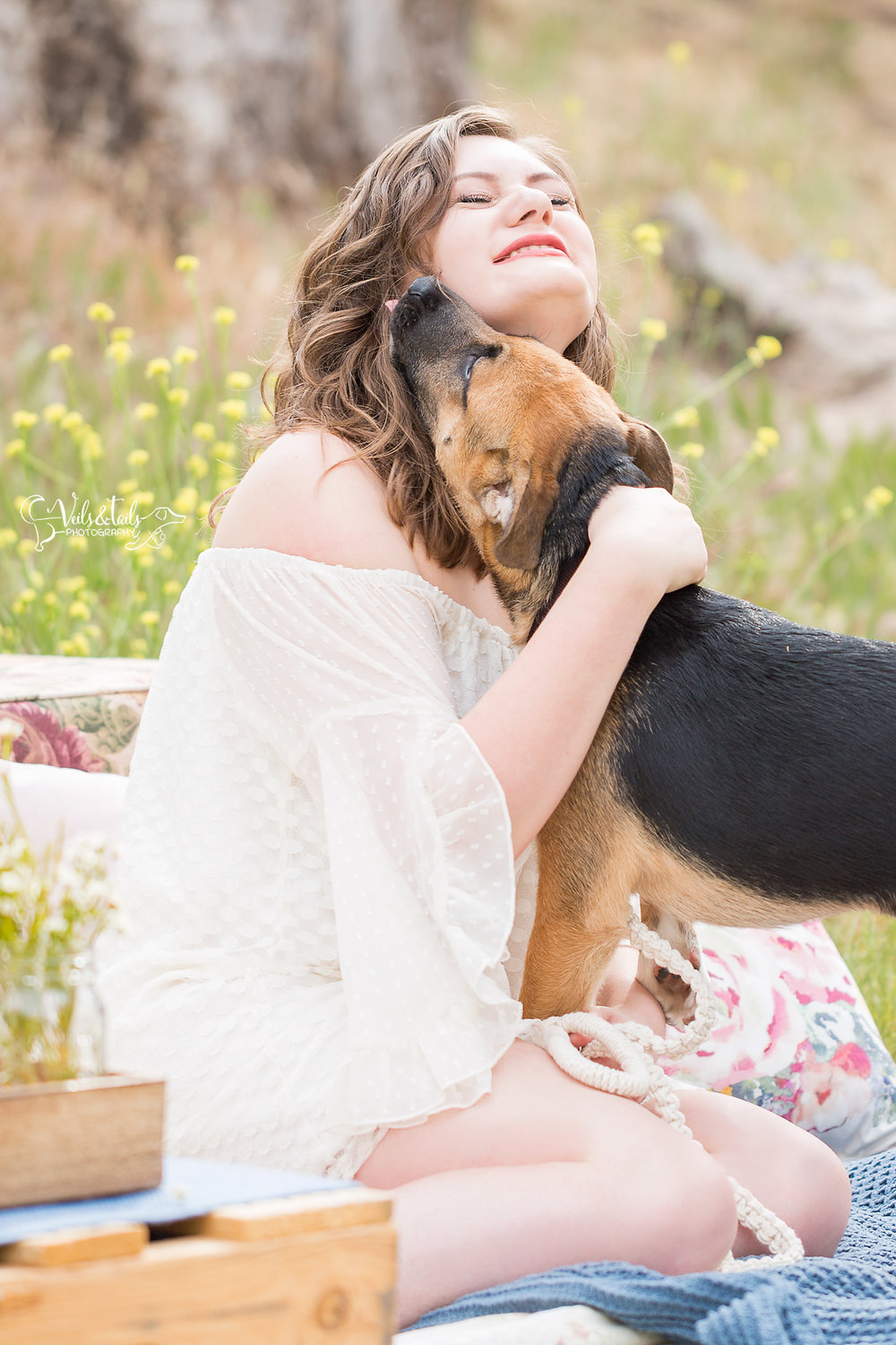 professional pet photographer santa barbara