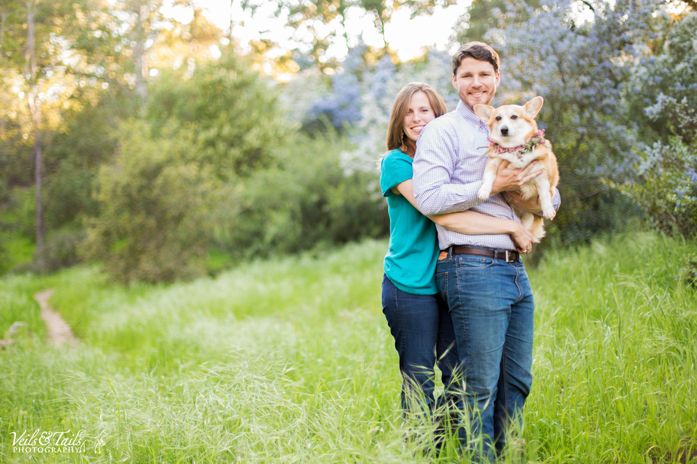 pet and wedding photographer Santa Barbara