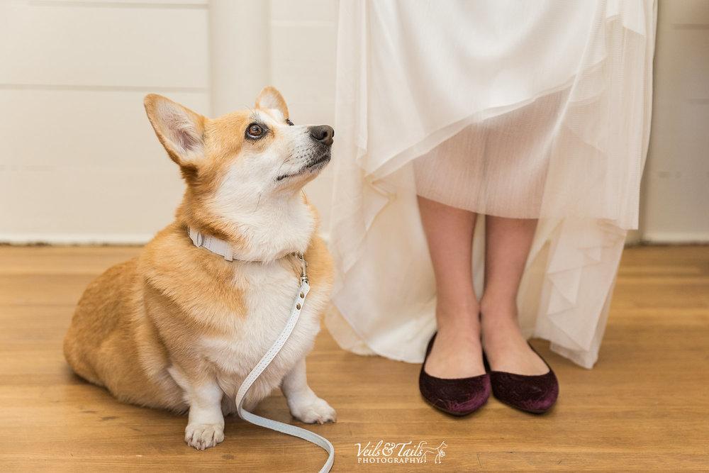 Rabuck_Wedding_blog_07.jpg