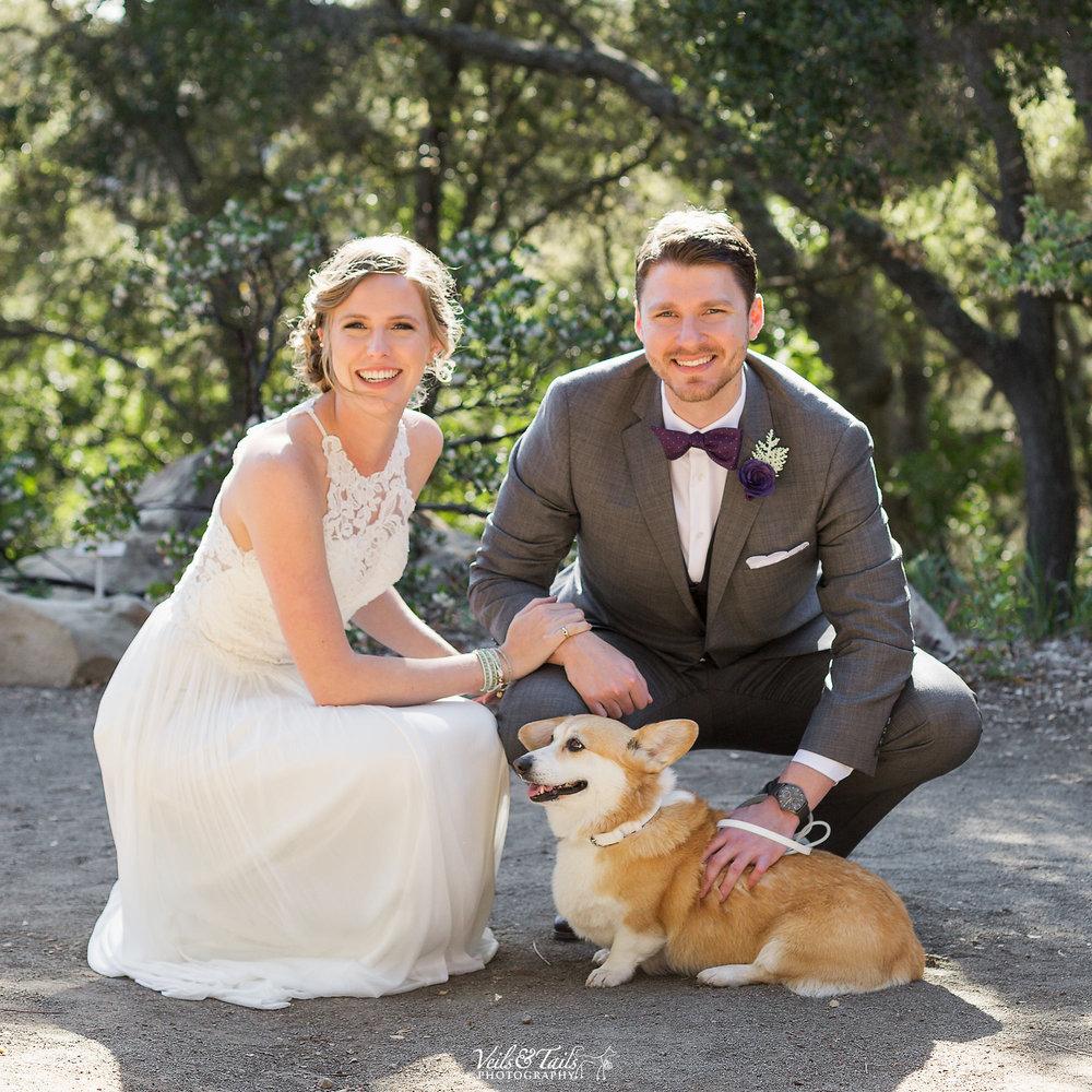 pet and wedding photographer Santa Barbara
