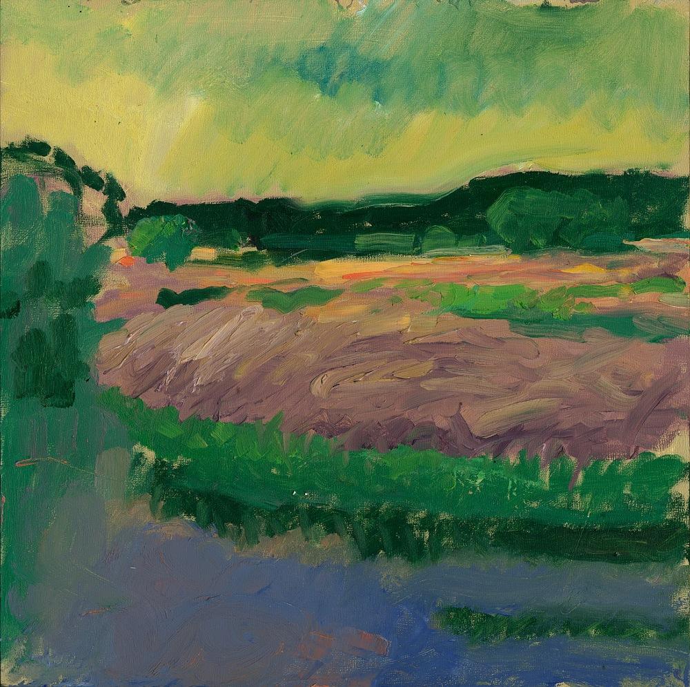 New Landscape 011.jpg