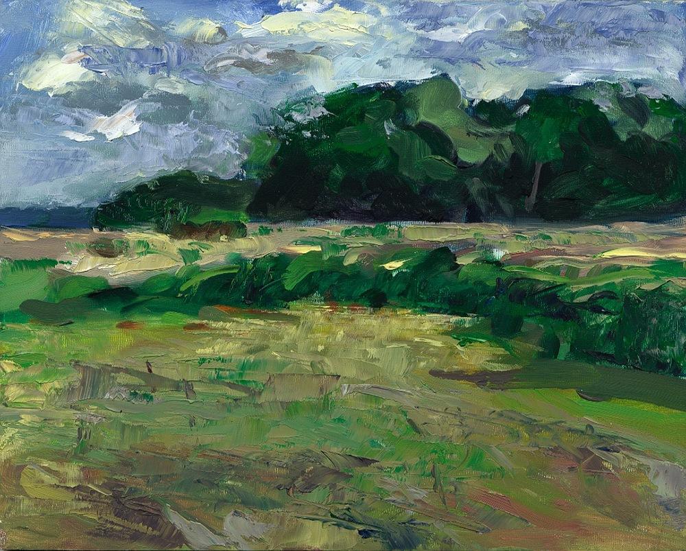 New Landscape 023.jpg