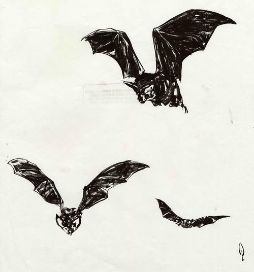 original batman movie licensing art sheet of bat drawings george