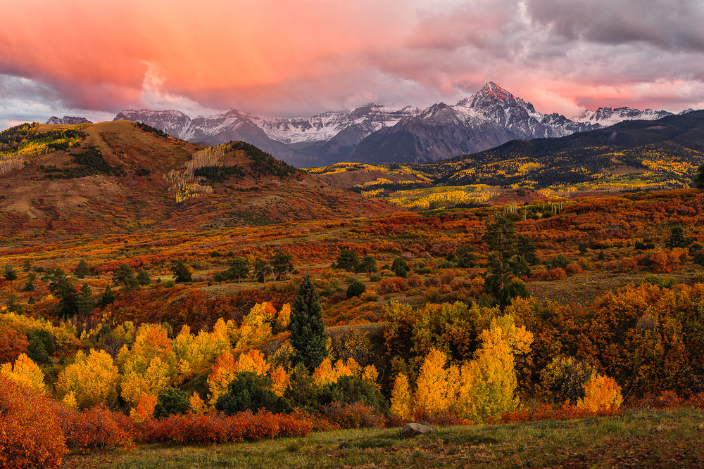 Colorado fall color resources below are a list of pages to find updates on changing leaves the first link is to a facebook group i created that has taken off and is one of the best sciox Choice Image