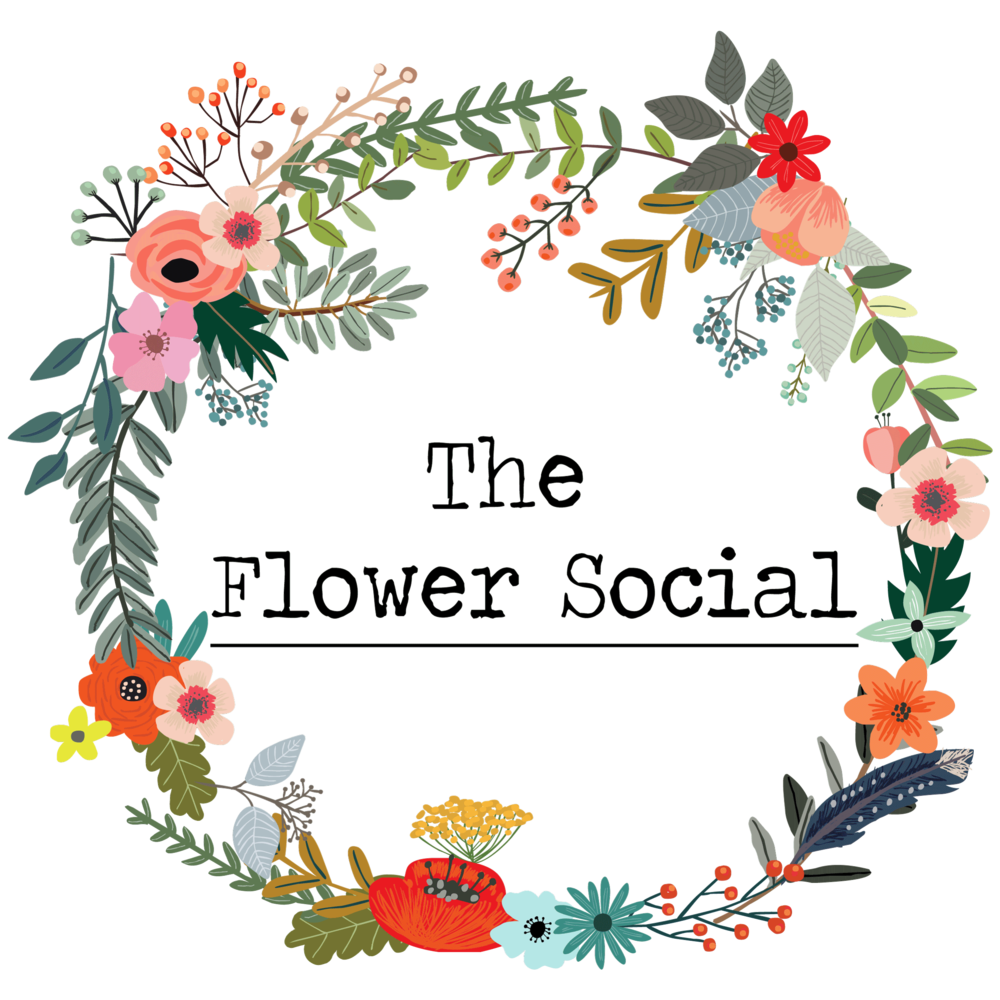 The sydney flower social sydney packages izmirmasajfo