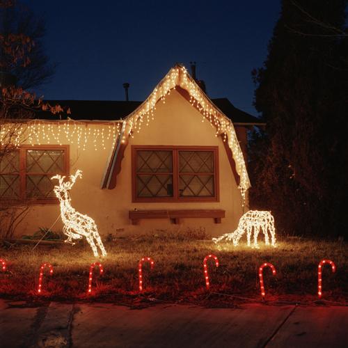 22_Deveney_Christmas_Deer.jpg