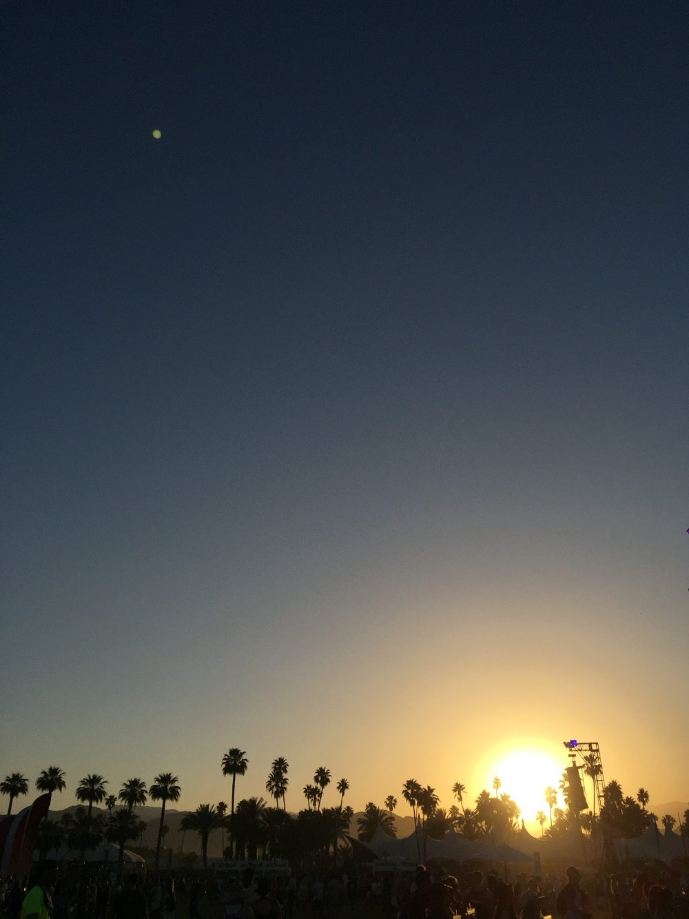 giant sunsets and palm silhouettes