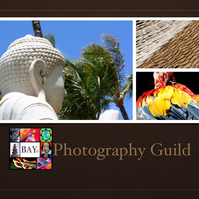 The Photography Guild