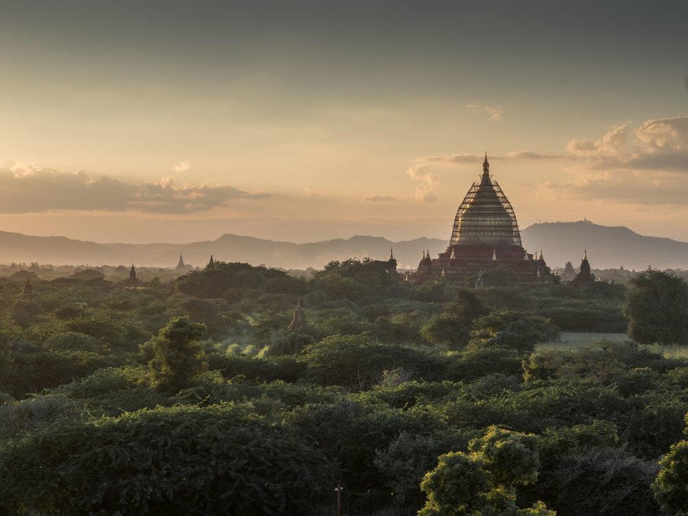 Scaffolding Bagan Style....