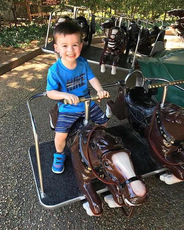 Having a blast at Busch Gardens today #toddlerlife #mylittleman
