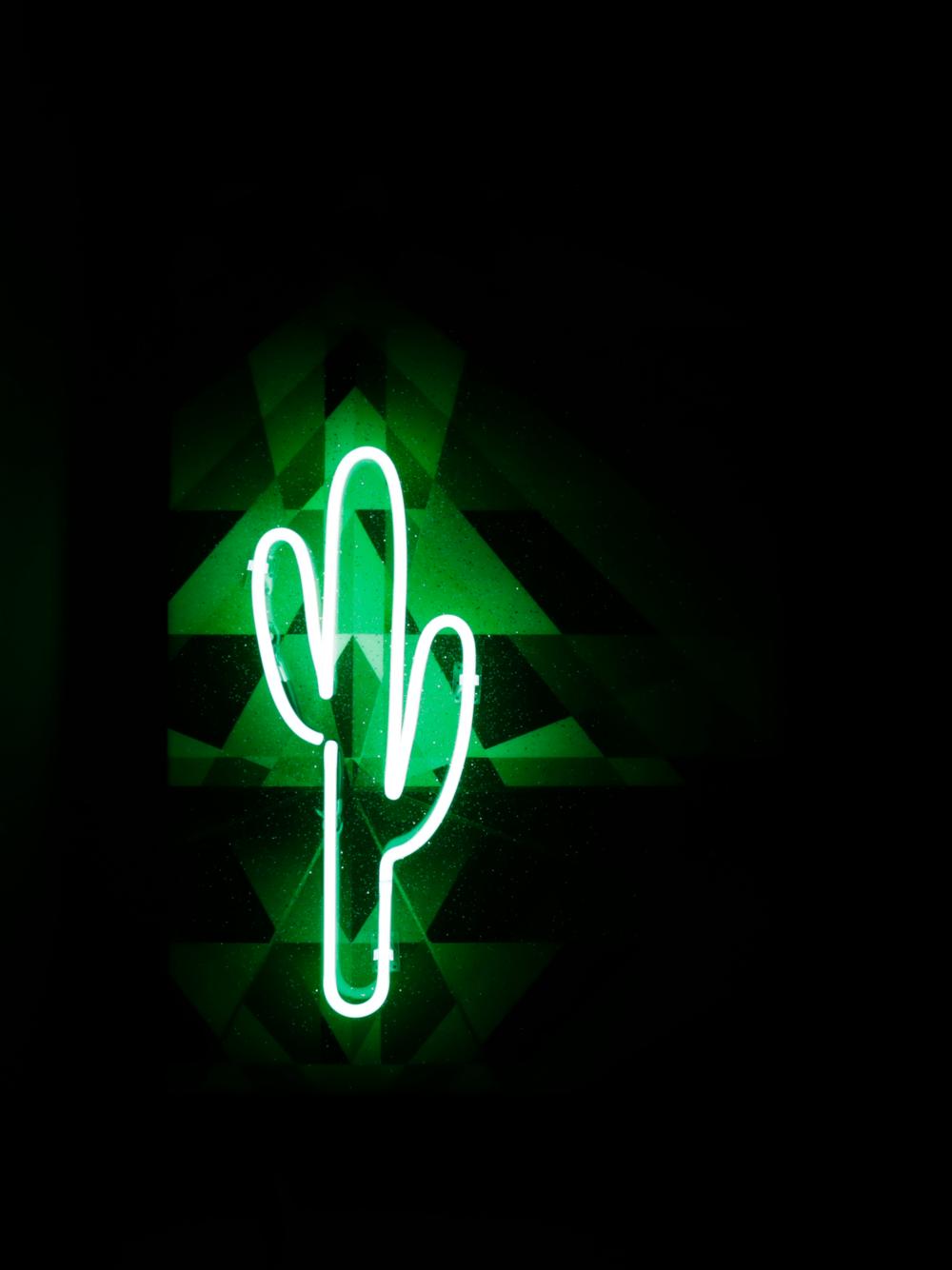 Neon Sunset Cactus