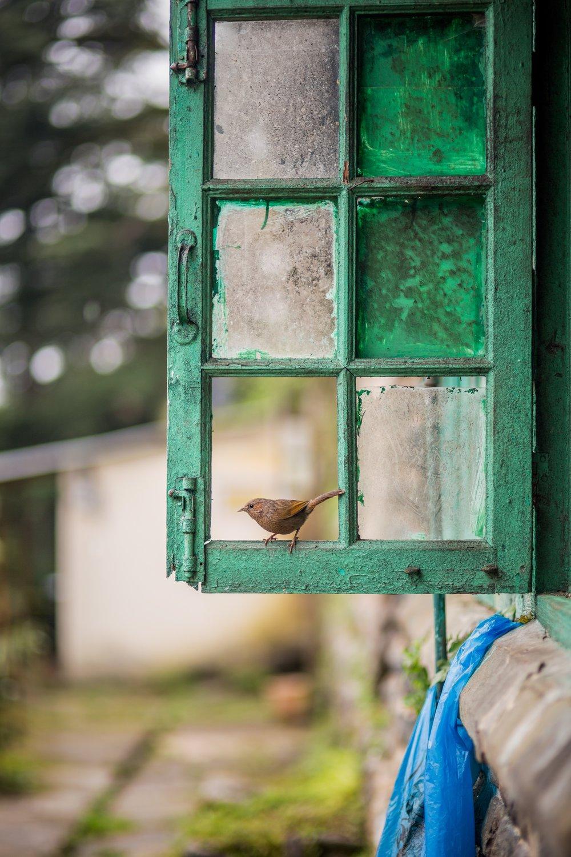 Photo by  Aditya Saxena  on  Unsplash