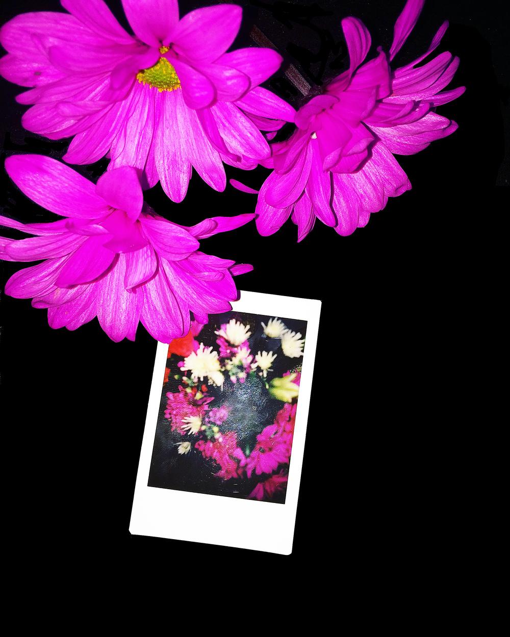 Flower_Fbook.jpg