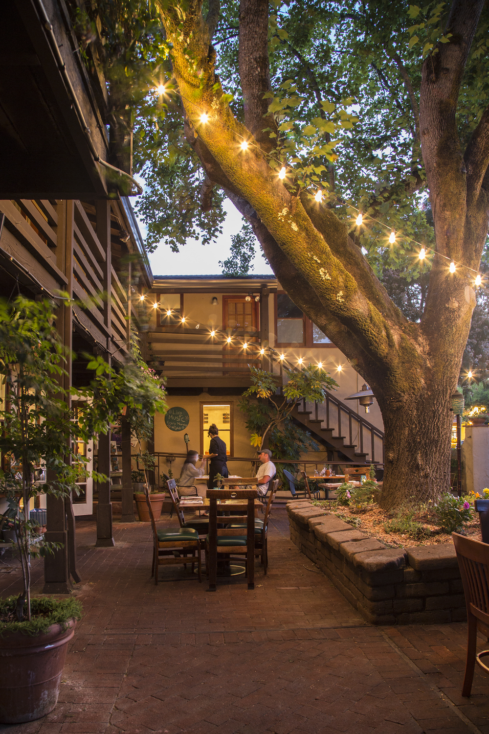backyard_forestville_sonoma_county_restaurant_72_8523.png