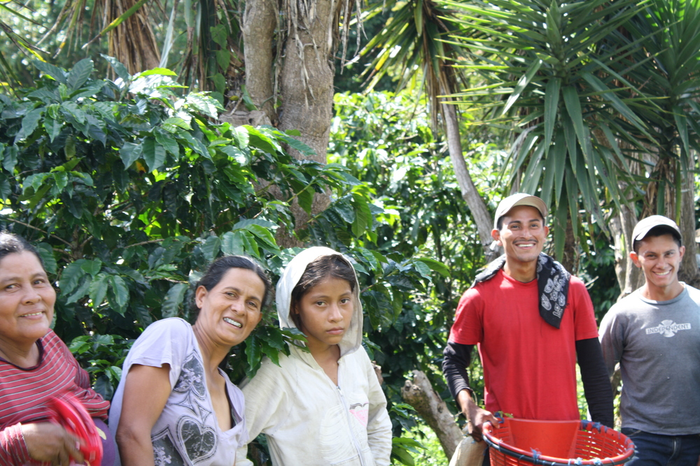 the most important part of coffee: the people! all smiles (almost) under the costa rican sun.  these faces are perhaps what I will remember most from my stay in the coffee farm. el roble de heredia, costa rica.