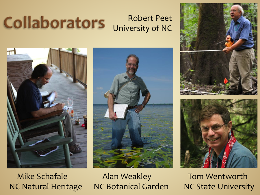 The four collaborators leading the Carolina Vegetation Survey. Photo Credit: Peet, R., Weakley, A., Wentworth, T., Schafale, M.  Carolina Vegetation Survey . 2012.
