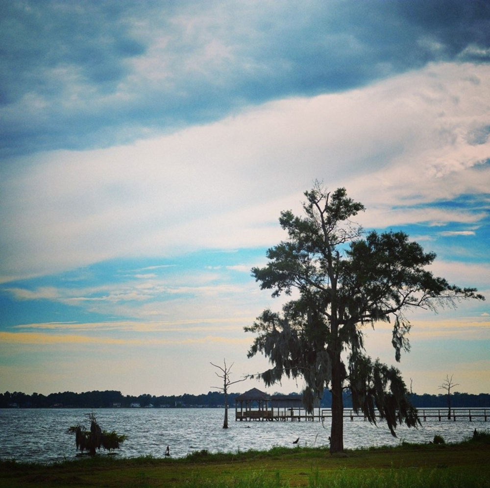 Pasquotank River. Photo Credit Jasmin Singh