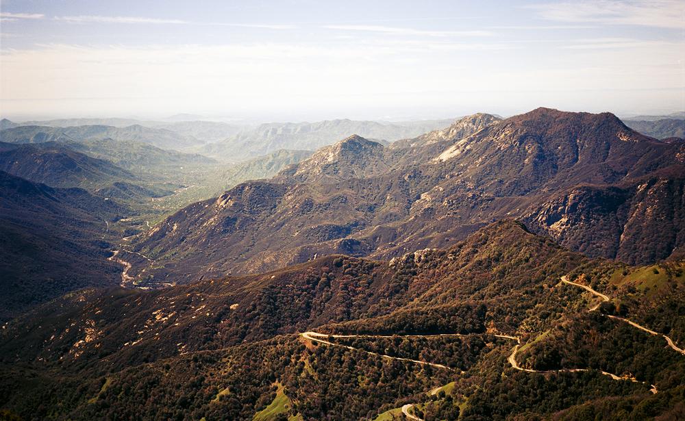 JAW_SequoiaFilm-12-2ps.jpg