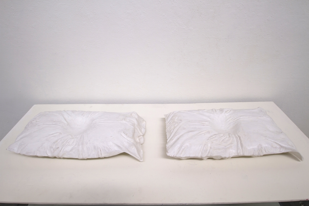 "Pillow Sighted 24 hrs, Pillow Blinded 38 hrs  Bass wood, each approx 24"" x 18"" x 6"", 2014"