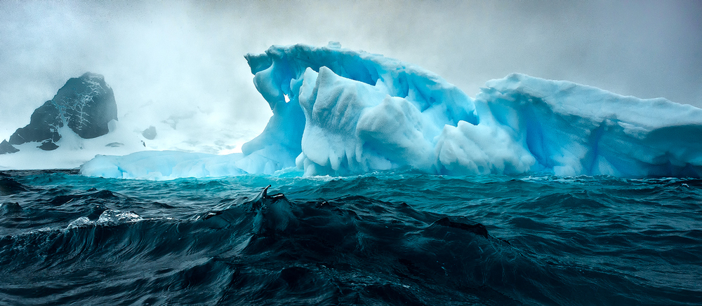 20111204_antarctica_4183_Web_SS_1200.jpg