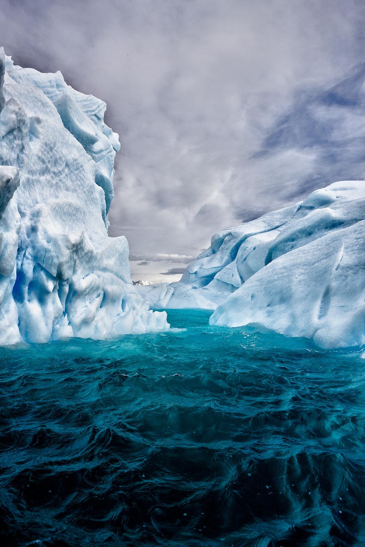 20111207_antarctica_8006_Web_SS_1200.jpg
