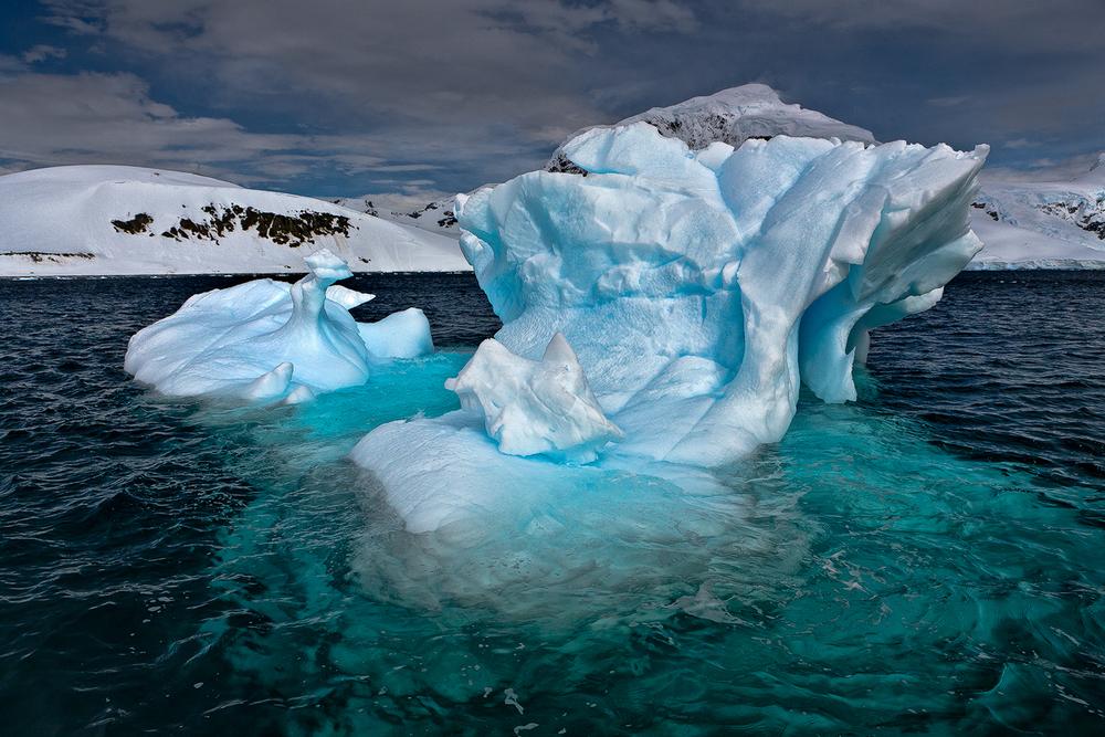 20111207_antarctica_8336_Web_SS_1200.jpg