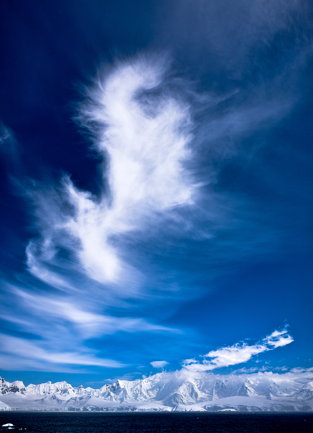 20111207_antarctica_9189_Web_SS_1200.jpg