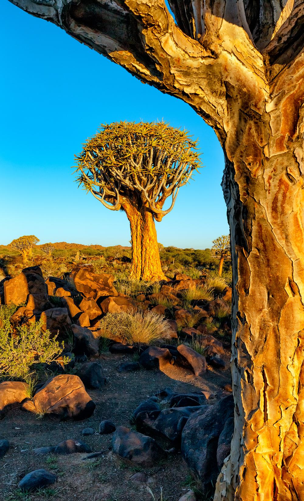 20140330_namibia_keetmanshoop_0104_Web_SS_1200.jpg
