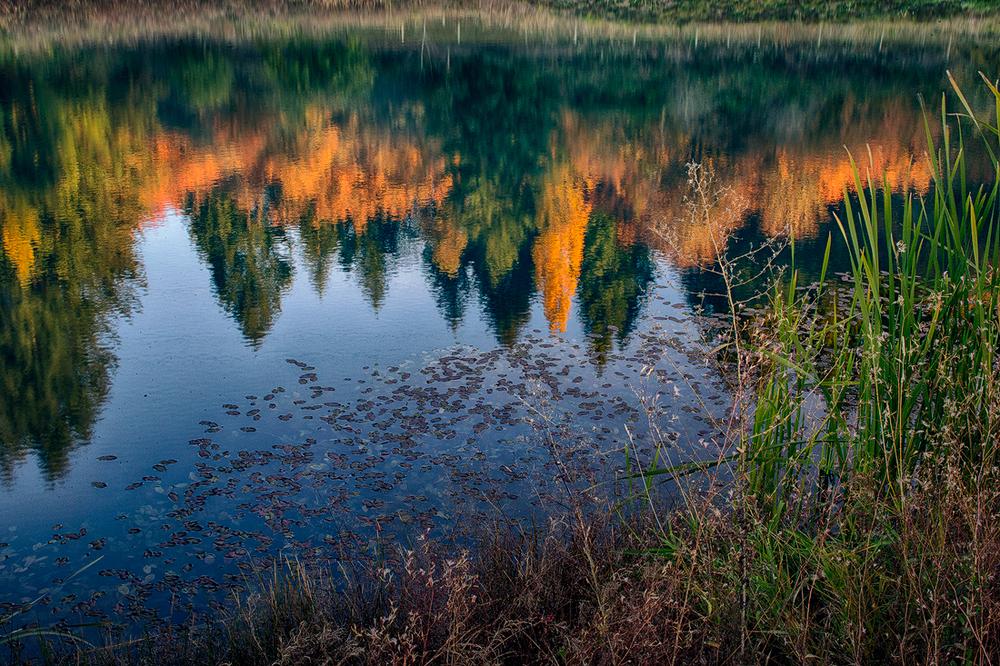 20131019_Willamette_Valley_1271_Web_1100.jpg