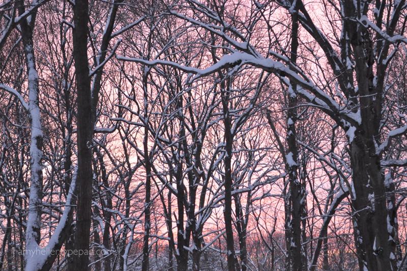 Snowy_Sunrise