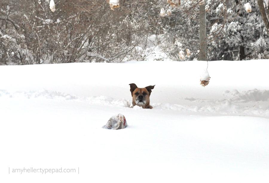 2011_SNOW_AH_3