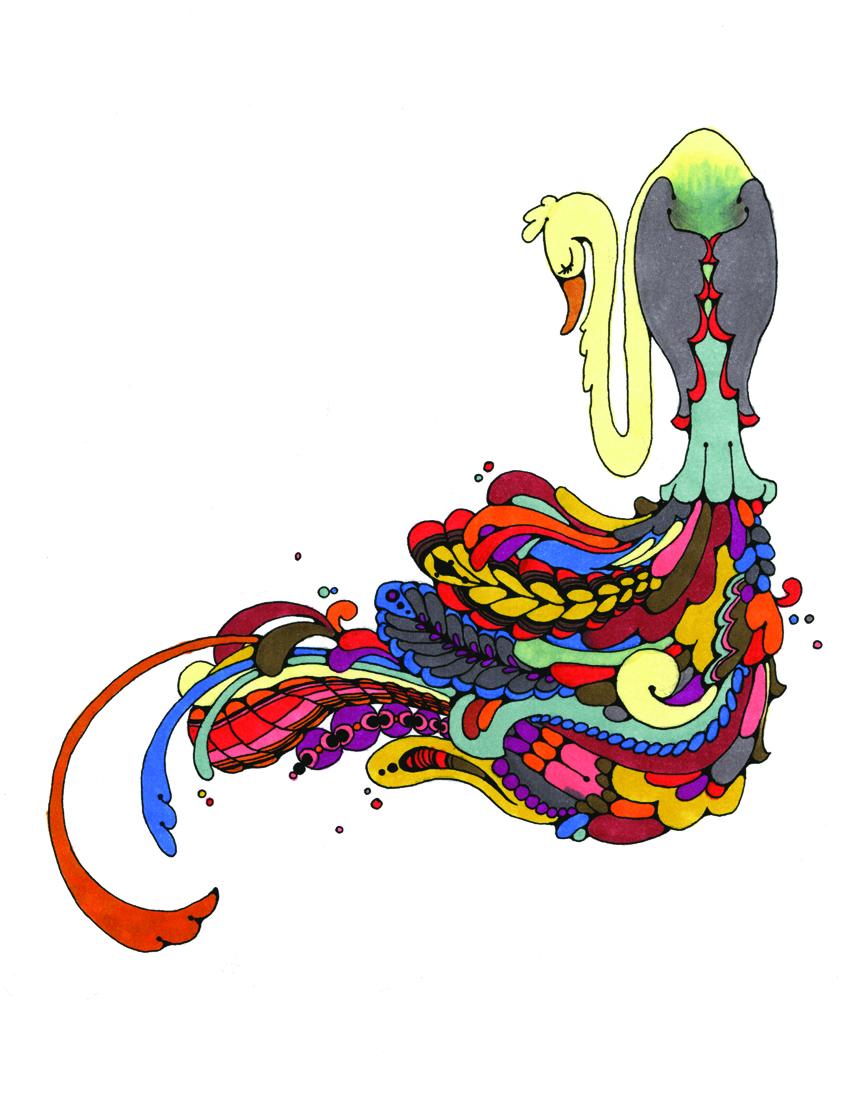 8.5x11colorfulbirdLOW RES.jpg