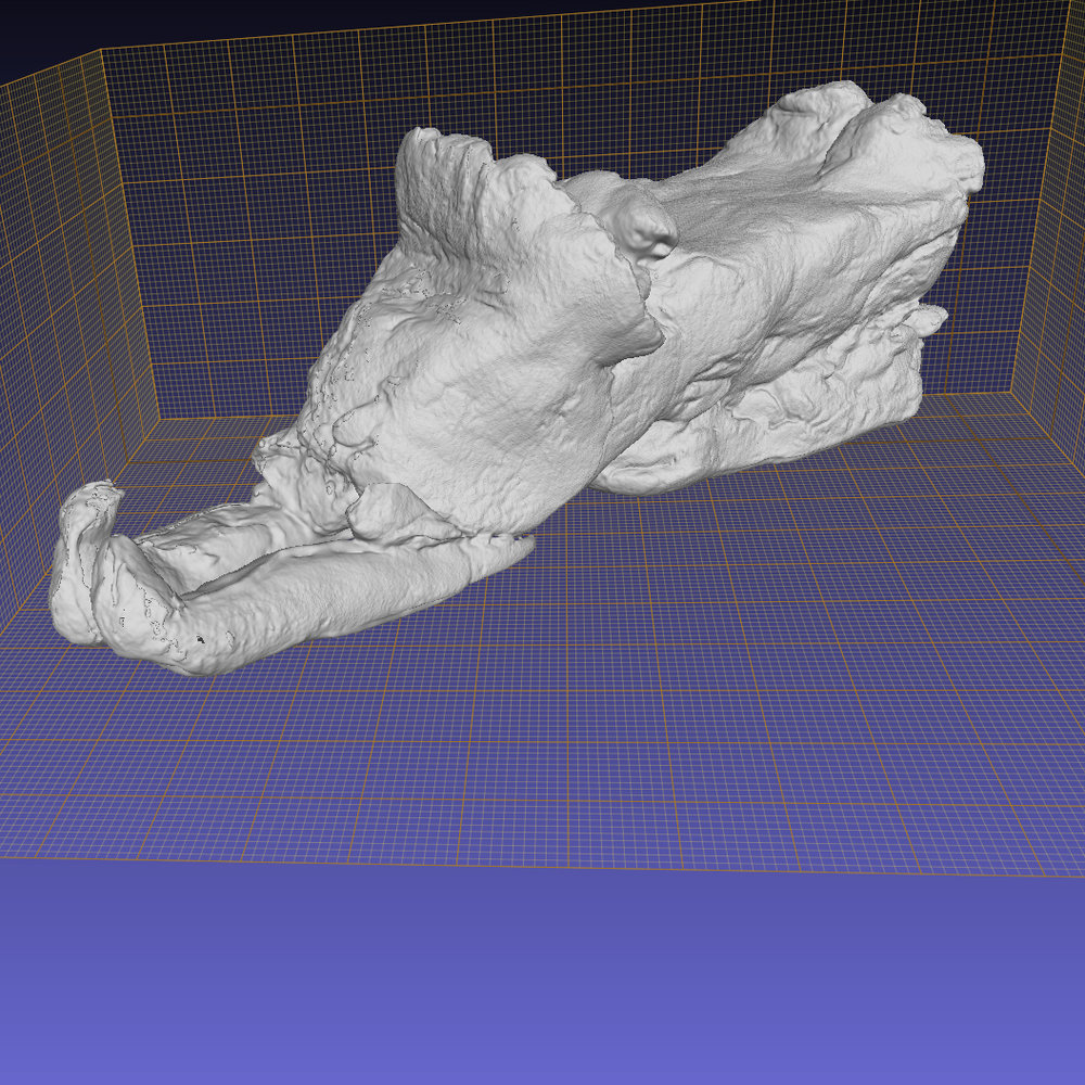 3D model of Moe Kelly and David Pudlat's play dough snowmobile courtesy of Giles Spence Morrow: Department of Anthropology, University of Toronto.