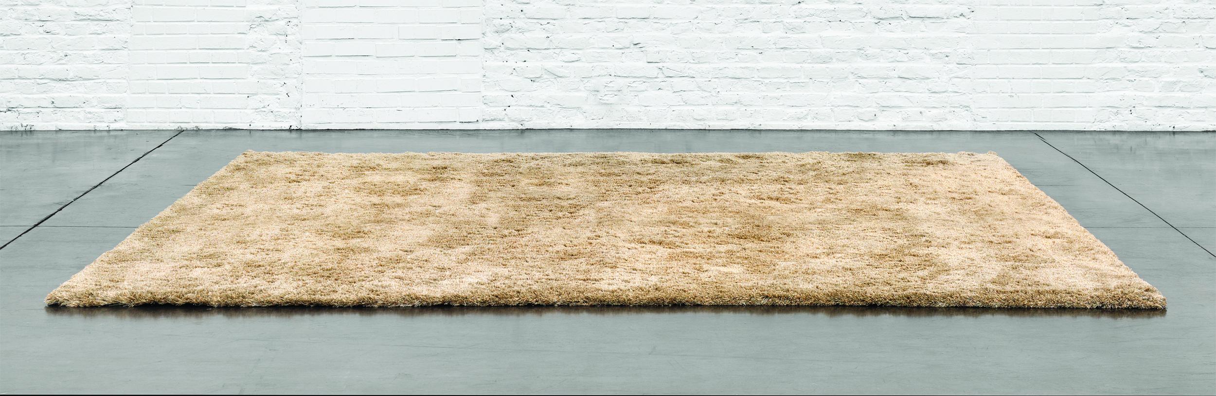 Tapijten voor je interieur | Collection Loncin — Loncin Interieur ...