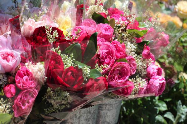 rosesretail.jpg