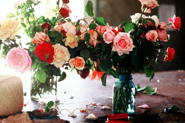 rosesretail.3.jpg