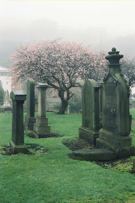 Film photograph: Life and Death; Edinburgh, Scotland