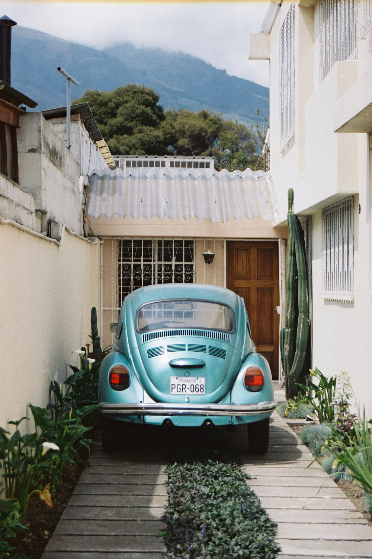 Film photograph: Maria's Beetle; Quito, Ecuador