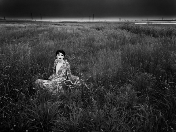 Eikoh Hosoe, A Private Landscape.