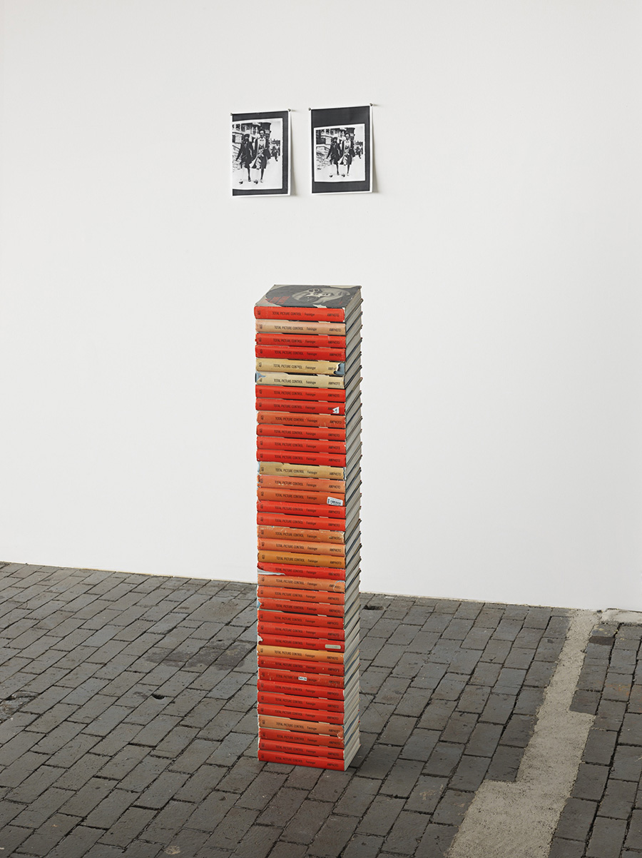 Zoe Leonard (b. 1961), Total Picture Control (I) 2016, 38 Books, 120 x 22.2 x 17.1 cm / 47 1/4 x 8 3/4 x 6 3/4 inches