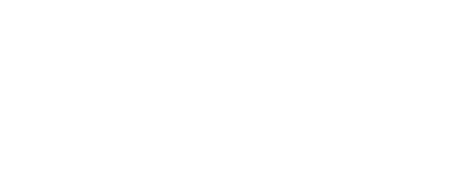 THE SALT BROTHERS
