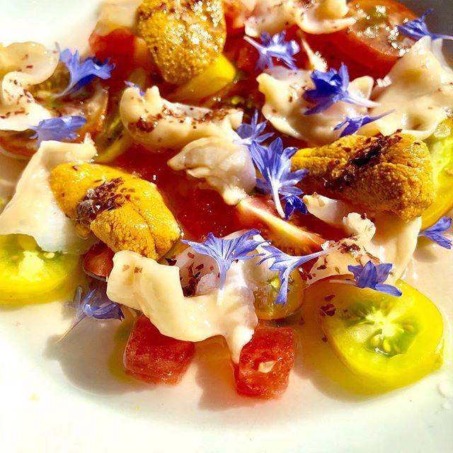 Geoduck Sashimi | Chilean Uni | Heirloom Cherry Tomato | Smoked Dulse | Tomato Consommé | Basil Oil #geoduck #crudo #sashimi #uni #tomatoes #eaterpdx #bonappetit #foodandwine #summerdish #ringsidefishhouse