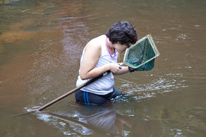 Student in the water looking into a net used to catch fish.
