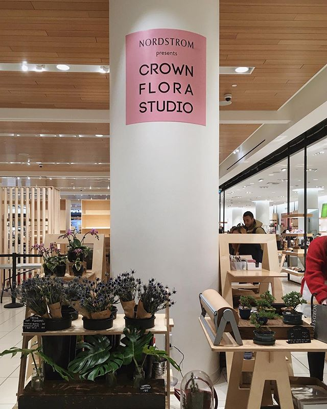 Stockist @crownflora has a pop-up at Nordstrom! Just a few of my succulents are left so swing by the Toronto Eaton Centre to check them out
