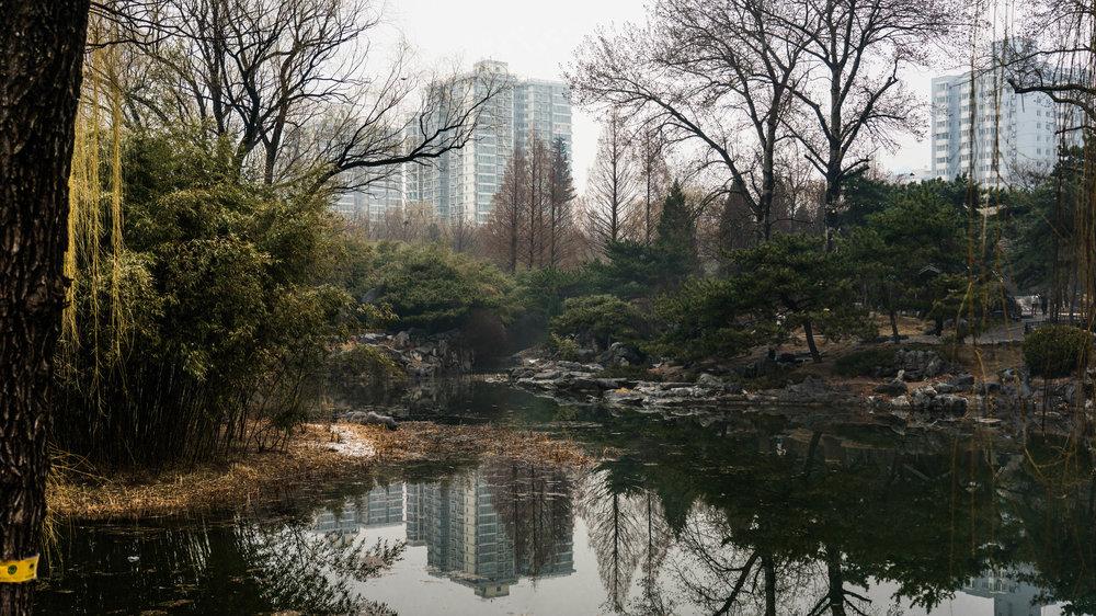 China_dt_web-7.jpg
