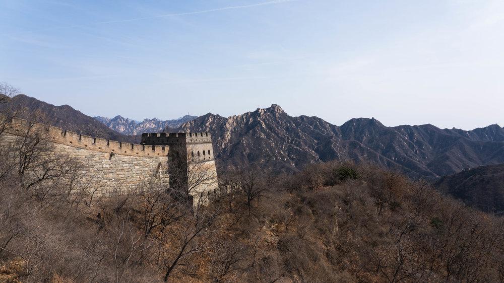 China_dt_web-11.jpg