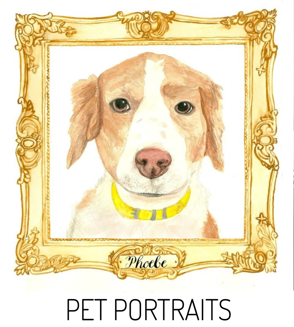 PET PORTRAITS // EMILY ROSE INK